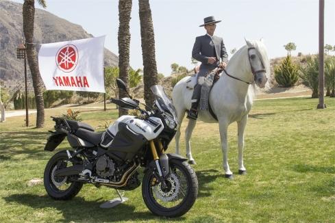 Convención Alicante Motor Yamaha 2014